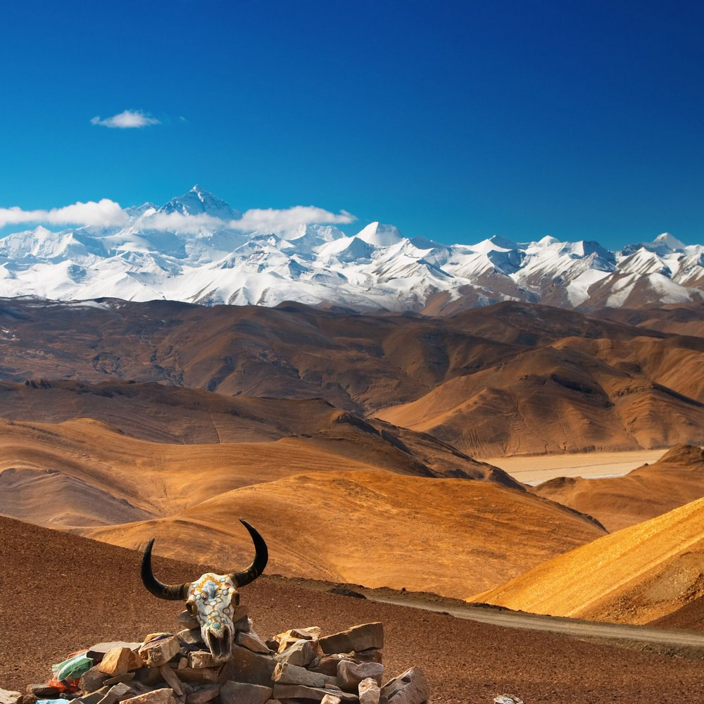 Sempre più Tibet